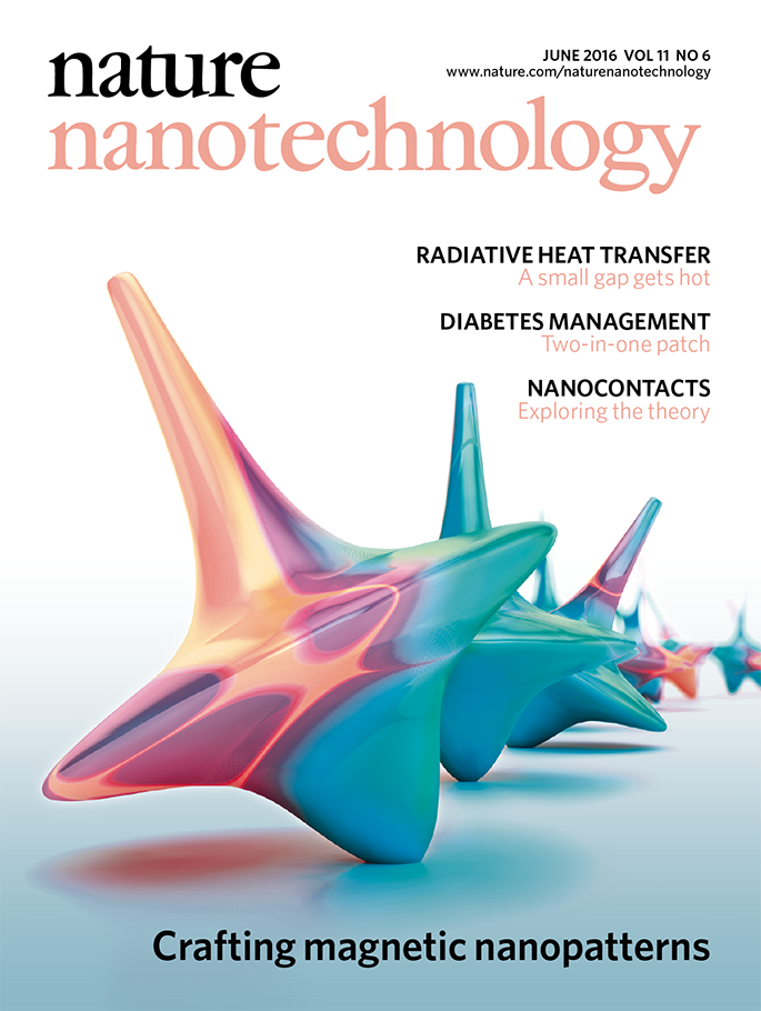 Bertacco_Nat Nanotech_Cover